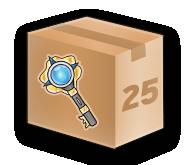 25 Key Discount
