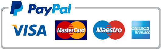 PayPal accepts Visa, MasterCard, Maestro, and Amex